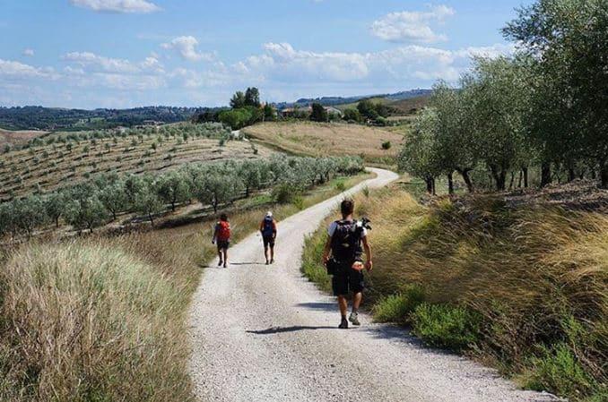 Travel the Via Francigena