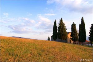Tuscany untouched in Tour amazing experience