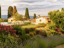 Luxury tuscany tours